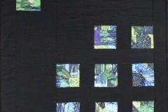 Monet's Waterlily